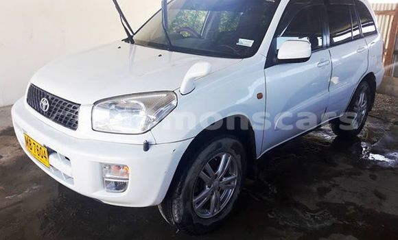 Buy Used Toyota RAV4 Other Car in Taro Island in Choiseul