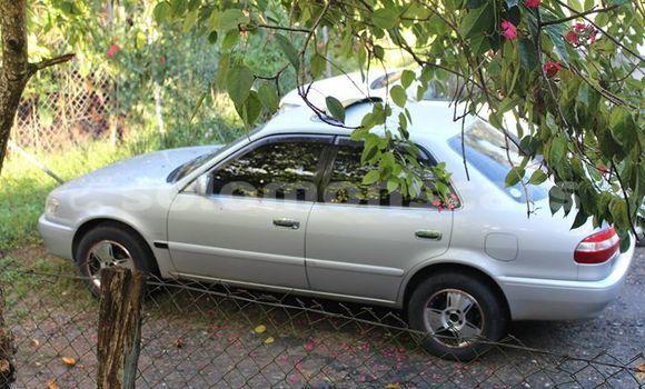 Buy Used Toyota Corolla Other Car in Auki in Malaita