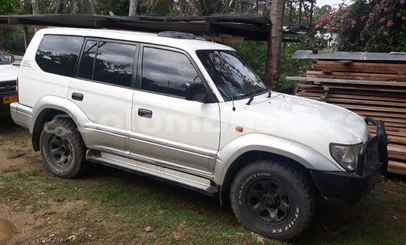 Buy Used Toyota Landcruiser White Car in Honiara in Guadalcanal