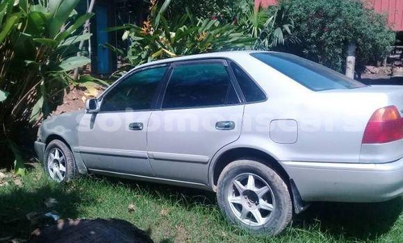 Buy Used Toyota Sprinter Silver Car in Honiara in Guadalcanal