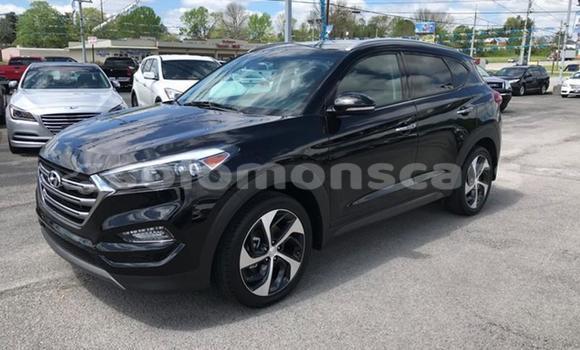 Buy Import Hyundai Tuscon Black Car in Honiara in Guadalcanal