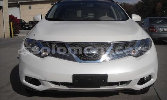 Buy Used Nissan Murano Other Car in Taro Island in Choiseul