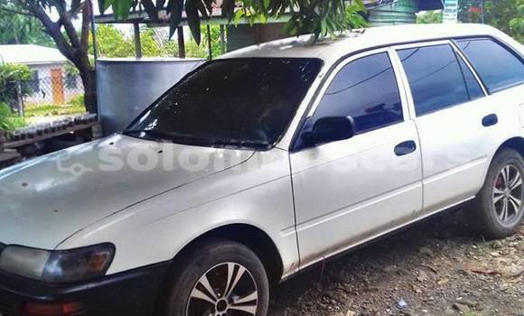 Buy Used Toyota Corolla Other Car in Honiara in Guadalcanal